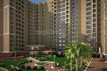 Shree Balai Shrustee - New Project