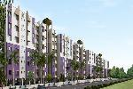 Chinarr Dream CT - New Project