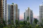 Sikka Kirat Greens - New Project