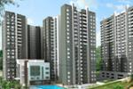 Sobha Forest View - New Project