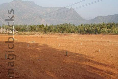 Residential Plot in Green County at Saswad Road-Image
