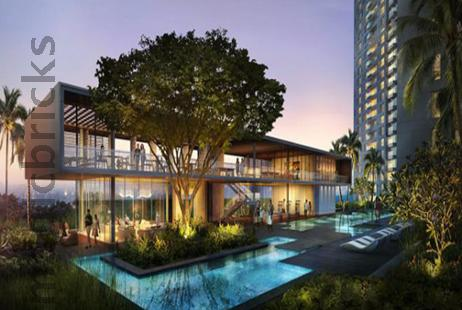 Auris Serenity - New Project