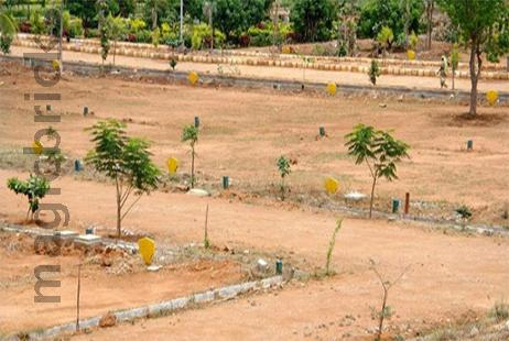 Residential Plot in Orchid Valley at Sultanpur Road-Image